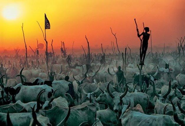 Photographie: Des images saisissantes de la tribu Dinka au Soudan