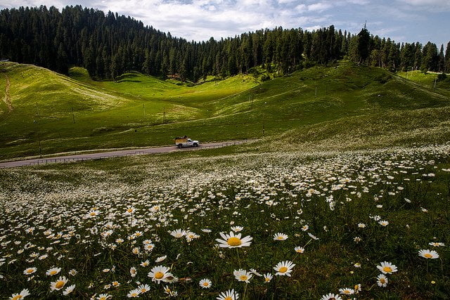 © sandeepachetan -Flickr  Cachemire - Inde
