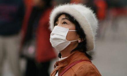 Planter des arbres contre la pollution, le pari de la Chine